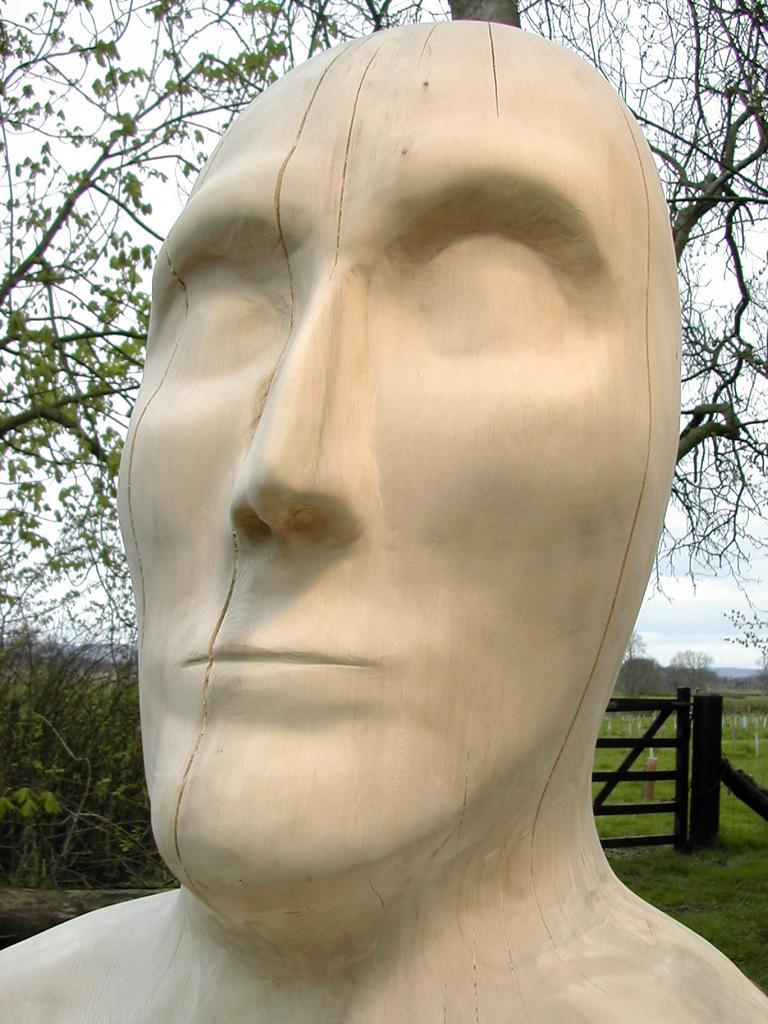Large Head